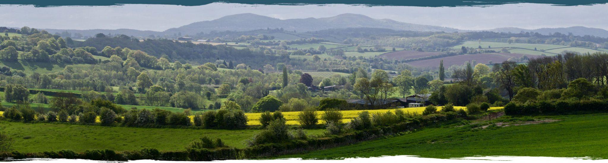Banner_Hills
